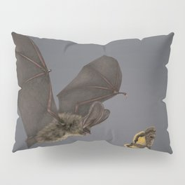 Brown Long-eared Bat Pillow Sham
