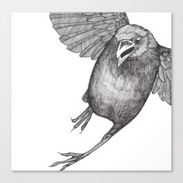 Crow Caws at You While Flying Away Canvas Print