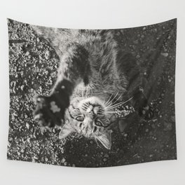 Cat Paws and Plays Wall Tapestry