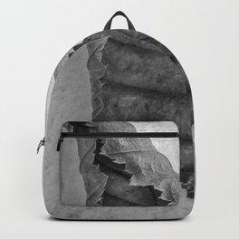 Frozen Leaf. Backpack