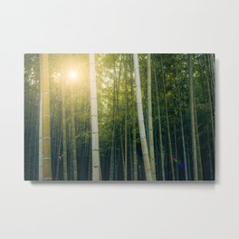 Sun shining through Arashiyama Bamboo Forest in Kyoto, Japan Metal Print