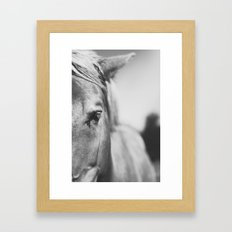 The Spirited Horse Framed Art Print
