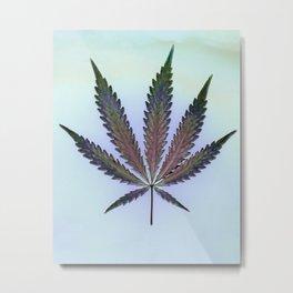 Hemp Lumen #7  Marijuana, Cannabis Metal Print