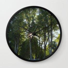Sun behind the trees  Wall Clock