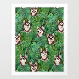 Pomsky Garden Art Print