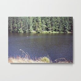 Cranberry Lake Metal Print