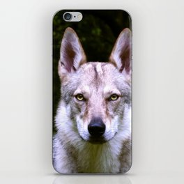 Czech Wolfdog Digit. Edition iPhone Skin
