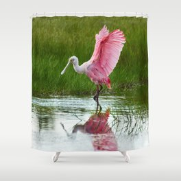 Spoonbill 3 Shower Curtain