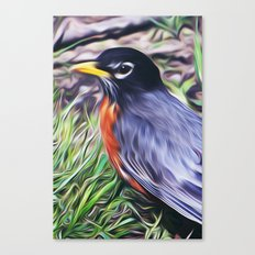 Red Breast Canvas Print