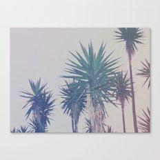 Vintage Palms Canvas Print