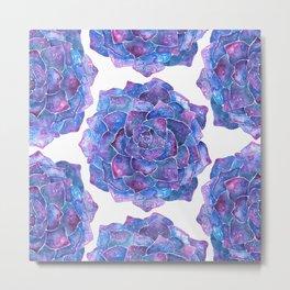 Ultra violet echeveria rosette succulent Metal Print