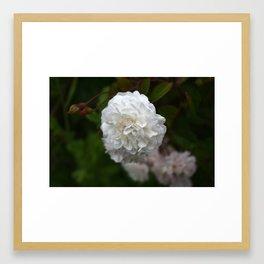 la fleur blanche Framed Art Print