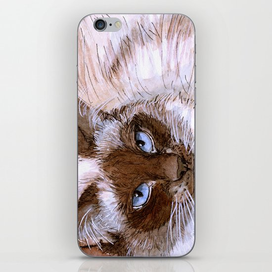 Birman Cat 561 iPhone & iPod Skin
