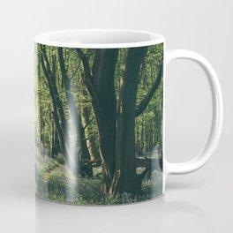 Path through Bluebells growing wild in natural woodland. Wayland Wood, Norfolk, UK. Coffee Mug