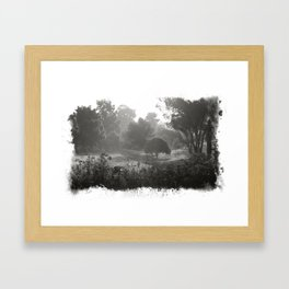 Foggy Path Framed Art Print