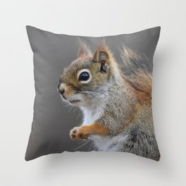 Beautiful Red Squirrel Portrait Throw Pillow
