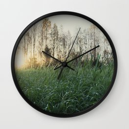 Northen sweden autum field Wall Clock