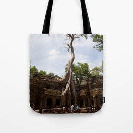 Ancient trees and Ancient Stories Tote Bag