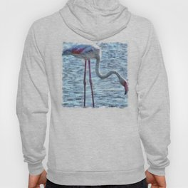 Balance of Nature Flamingo Watercolor Hoody