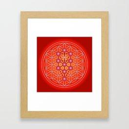 Flower of Life - Root Framed Art Print