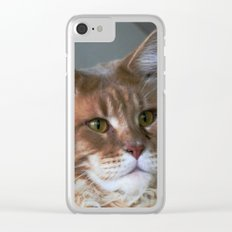 Orange cat with yellow eyes Clear iPhone Case