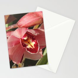 One Orchid on a Line Stationery Cards