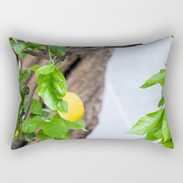 Italian Lemon Tree Rectangular Pillow