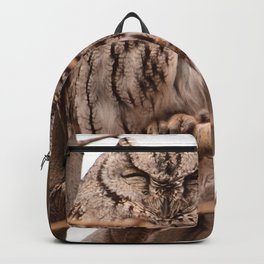 Wild Owl - Ivins, Utah Backpack