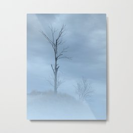 Barely Visible Metal Print