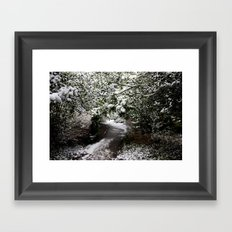Snowy Path in The Trees Framed Art Print