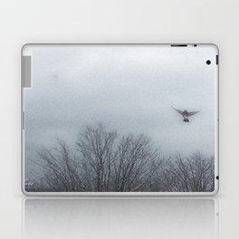 """""""Lori's First Robin"""" Laptop & iPad Skin"""