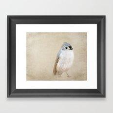 Bird Little Blue Framed Art Print