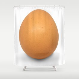 Chicken Egg , the brown eggs Artistic inspiration Shower Curtain