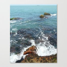 Over grown ocean Canvas Print