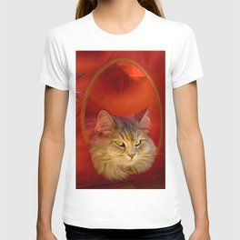 Cleopatra in her little cat house T-shirt
