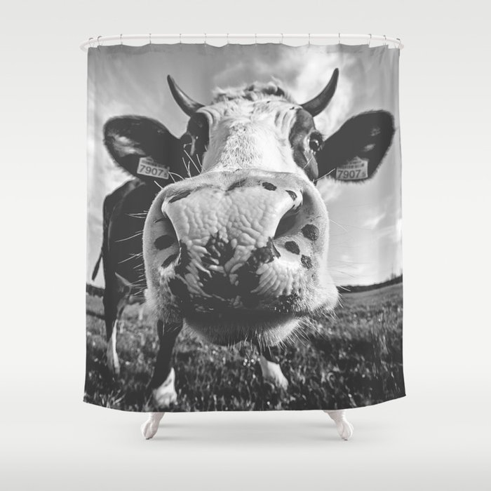 Inquisitive Cow Shower Curtain