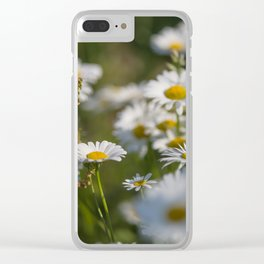 Daisies meadow in the summer Clear iPhone Case