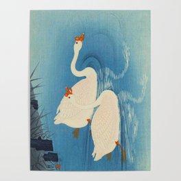 Ohara Shoson Koson Two Swimming Geese Japanese Woodblock Print Vintage Historical Japanese Art Poster
