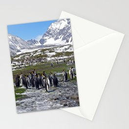 King Penguins, Snow and Glaciers Stationery Cards