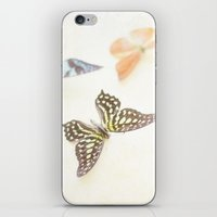 butterflies iPhone & iPod Skins featuring Butterflies  by Pure Nature Photos