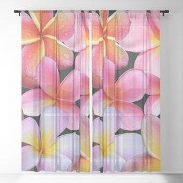 Pink Plumerias Sheer Curtain