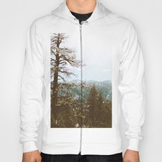 Spring is almost here Hoody