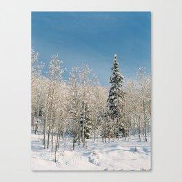 Cottonwood Canyon III Canvas Print