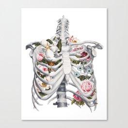 Botanatomical: Botanatomy II Canvas Print