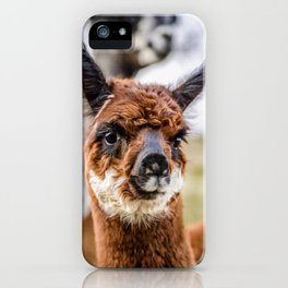 Moonlight Alpaca Kendal iPhone Case
