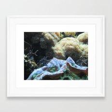 Black & White Fishes Framed Art Print