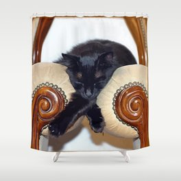 Relaxed Black Cat Sleeping Between Two Chairs  Shower Curtain