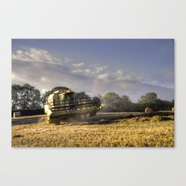 Combined  Canvas Print