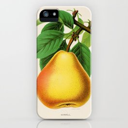 Canadian Horticulturalist 1888-96 - Howell Pear iPhone Case