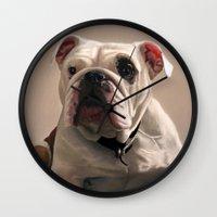 british Wall Clocks featuring British Bulldog by Mel Hampson